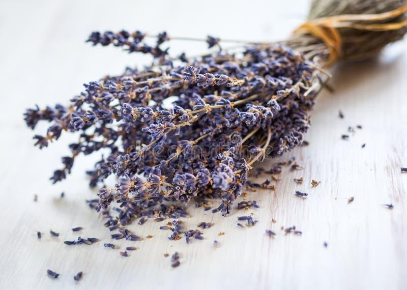 Bündel getrocknete Lavendelblumen lizenzfreie stockbilder