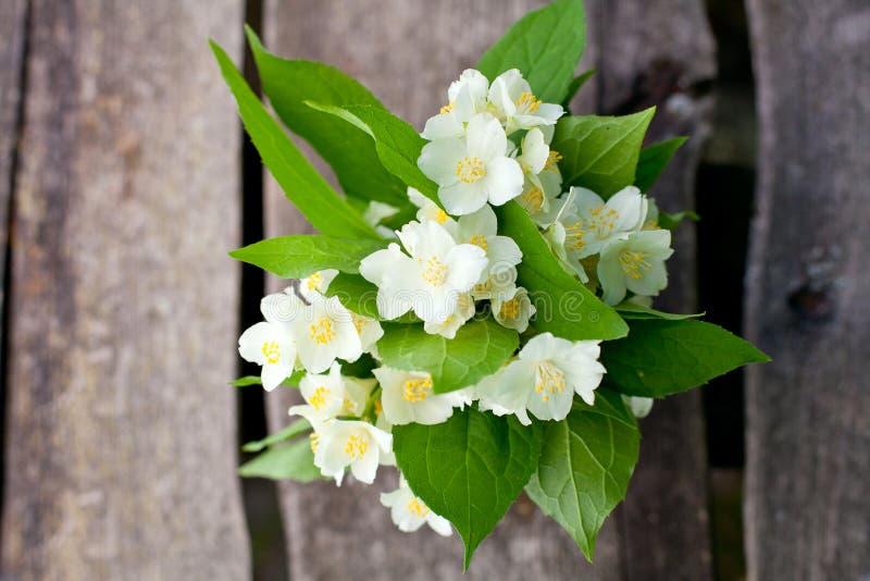 Bündel Jasminblumen auf Holztisch stockbild