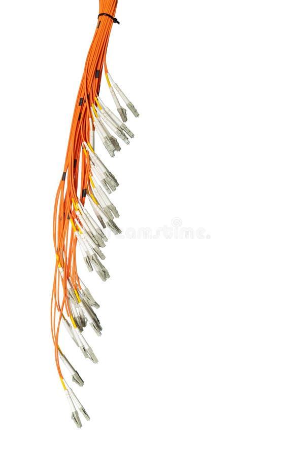 Bündel Lichtwellenleiter und Verbindungsstücke, lokalisiert auf weißem Hintergrund IT-Technologie, Datenübertragungskanal lizenzfreie stockfotografie