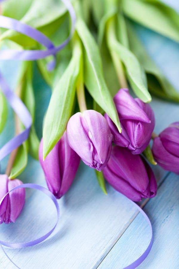 Bündel purpurrote Tulpen lizenzfreie stockfotos