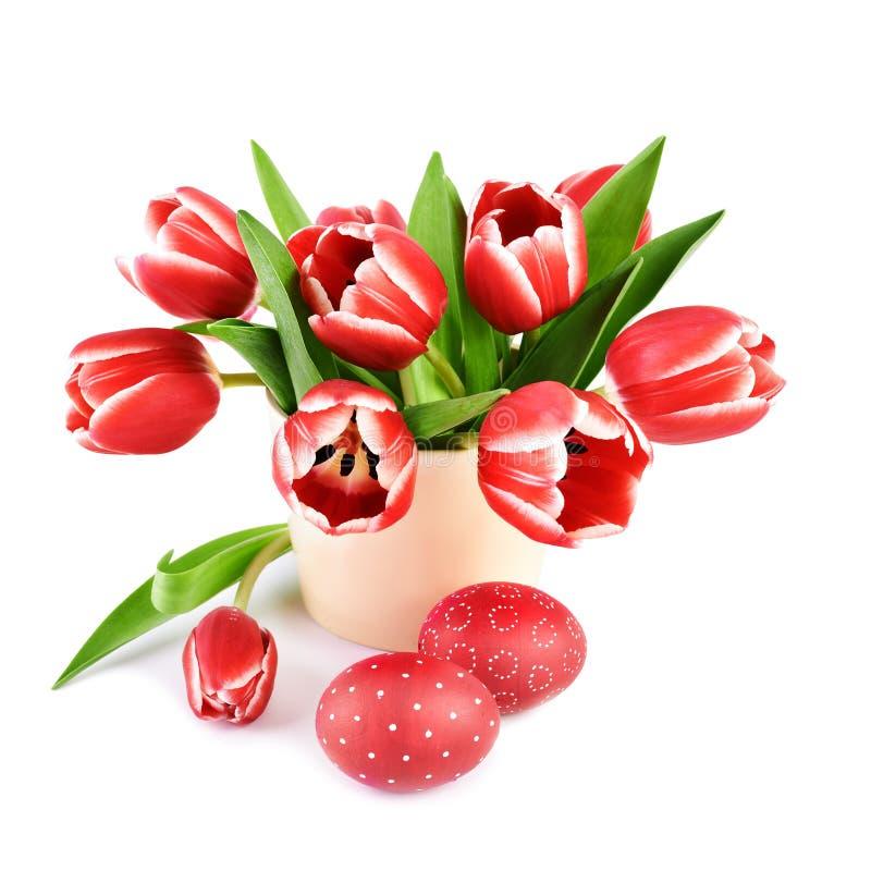 Bündel rote gestreifte Tulpen und Rot zwei färbten Ostereier auf wh stockbild