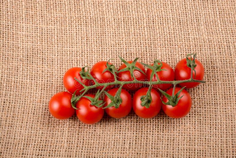 Bündel rote reife geschmackvolle frische Kirschtomaten stockbilder