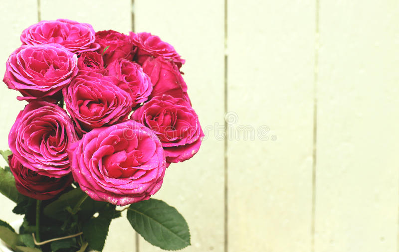 Bündel schöne rosa Rosen lizenzfreies stockbild