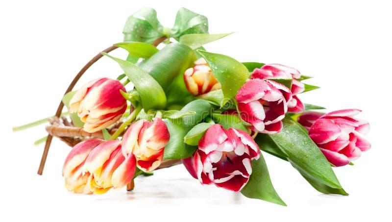 Bündel Tulpen in einem Vase formte als Korb stockfotos