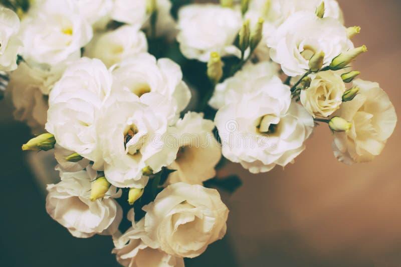 Bündel weiße Eustomablumen lizenzfreies stockbild