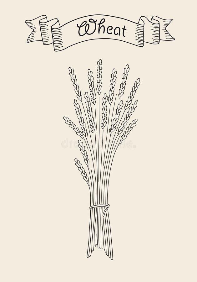 Bündel Weizen lizenzfreie abbildung