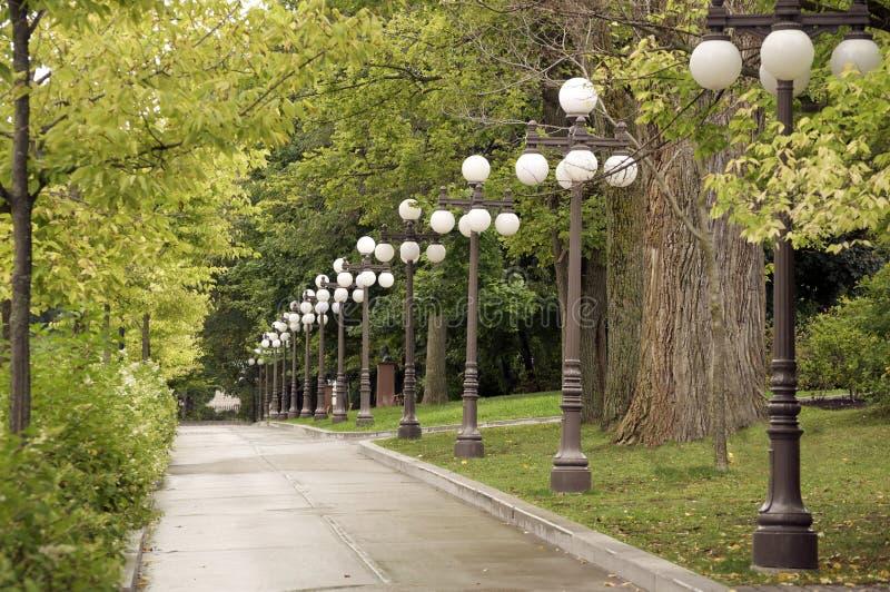 Download Bürgersteig Zeichnete Mit Bäumen Und Lampen Stockfoto - Bild von ulme, bahn: 27725854