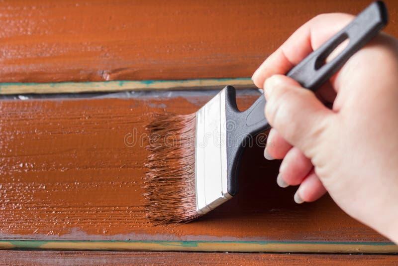 Bürste mit Farbe in der Hand Ein Mann malt blaue Bretter in einem braunen Pinsel lizenzfreie stockfotografie