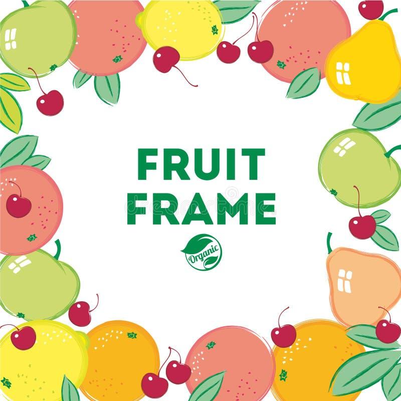 Bürsten Sie gemalte Früchte und Blätter auf dem weißen Hintergrund vektor abbildung