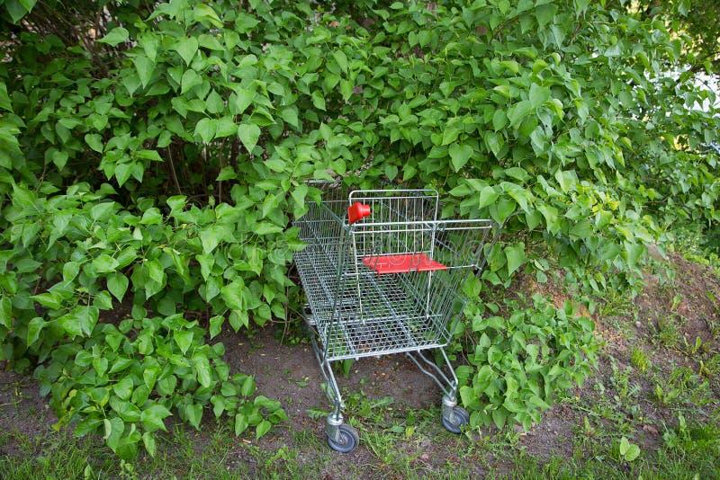 będę shoping cart zdjęcia stock