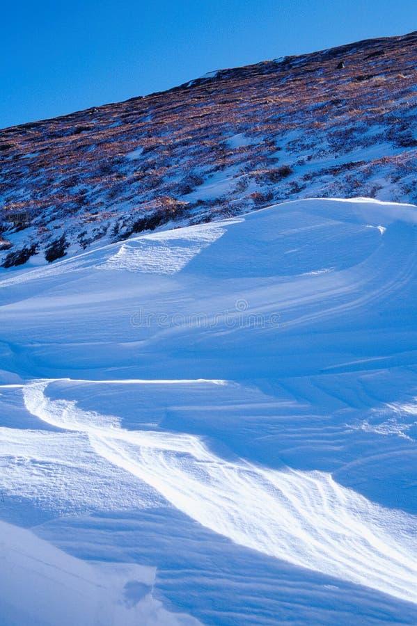 błękit śnieg zdjęcia stock