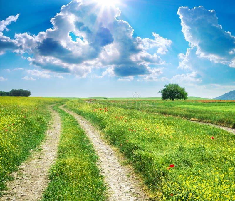 Download Błękit Głęboki Pasa Ruchu Drogi Niebo Zdjęcie Stock - Obraz złożonej z lane, piękno: 57657978