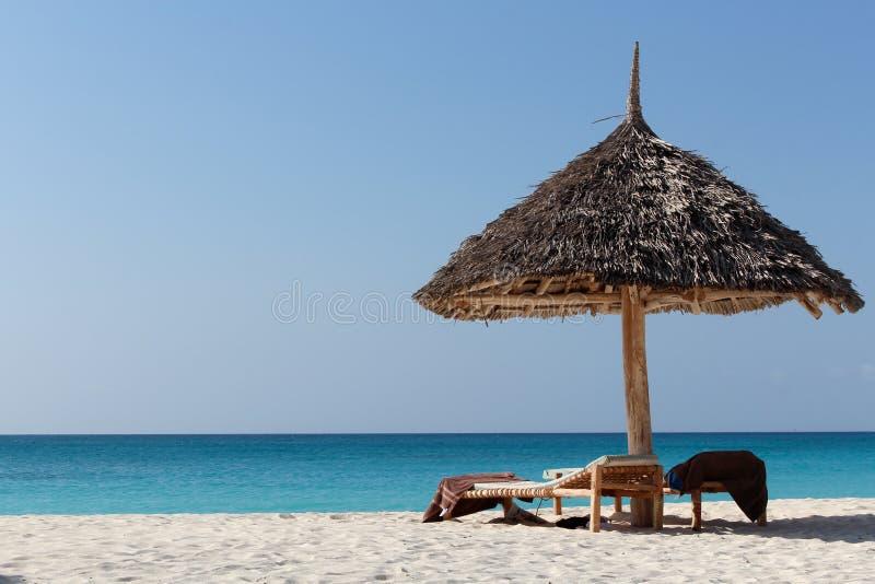 Błękit plaża z sunbeds zdjęcia royalty free