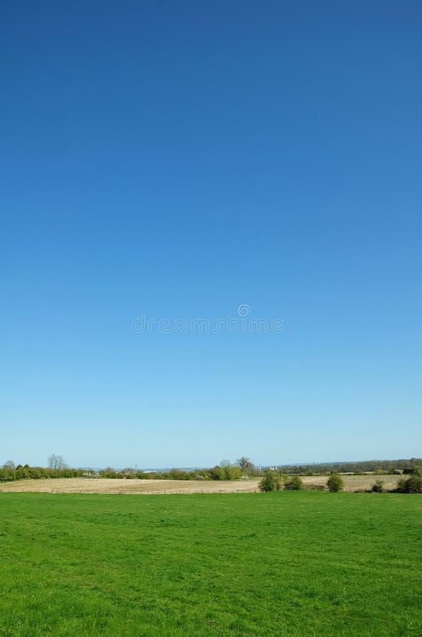 Błękit pola zieleni niebo