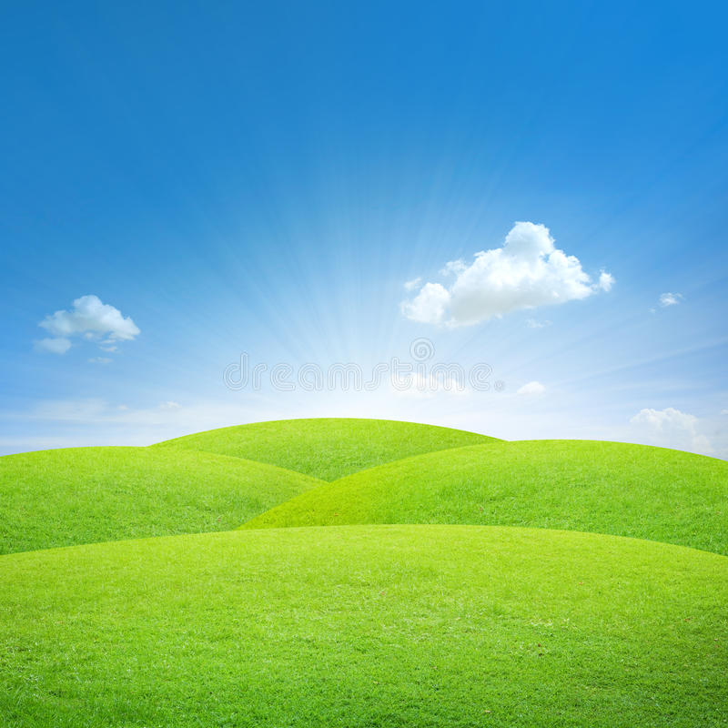 błękit pola zieleni niebo fotografia royalty free