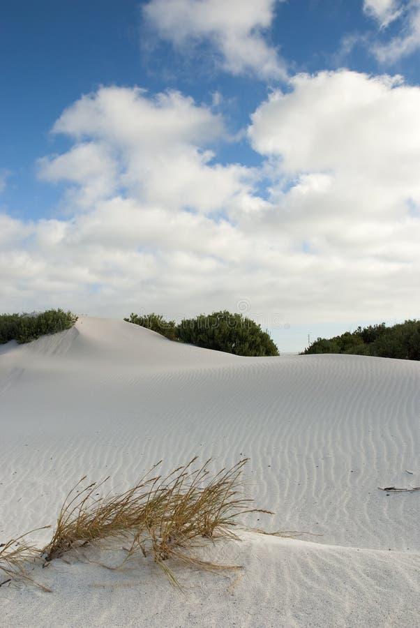 błękit pustynni zasięrzutni sceny nieba obraz royalty free