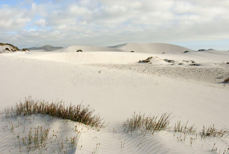 błękit pustynni zasięrzutni sceny nieba fotografia stock