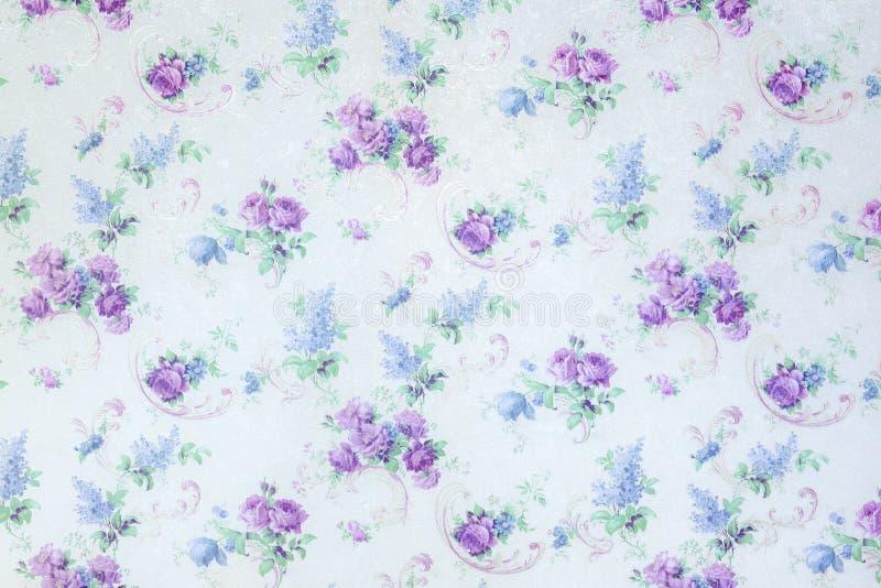 Błękit róża kwitnie tło wzór na ściennej tło teksturze fotografia stock