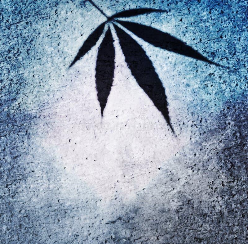 Błękit rama z canabis leaf na ściennym tle, może używać jako, tło lub etykietka zdjęcie royalty free