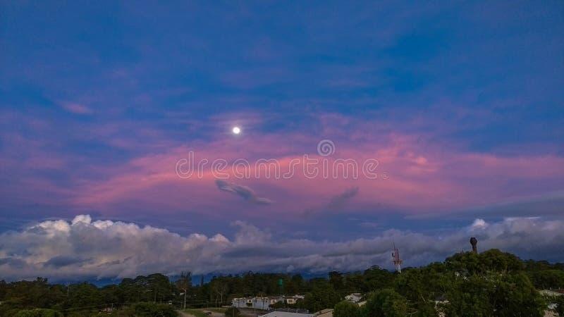 Błękita różowy zmierzch zdjęcia stock