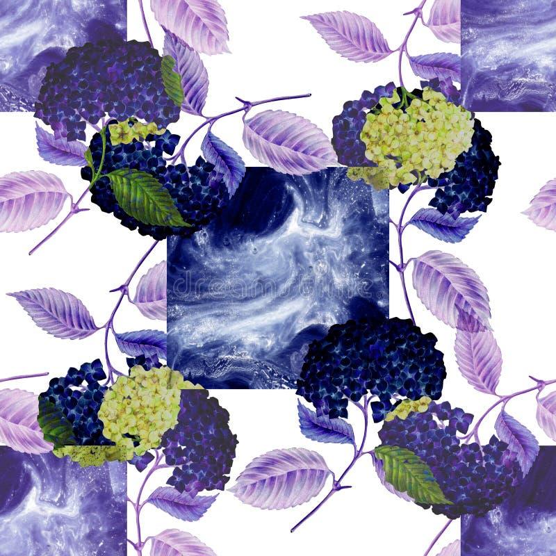 Błękitna łasa i kwiaty hortensja na białym tle Dla projekta bezszwowy wz?r ilustracji