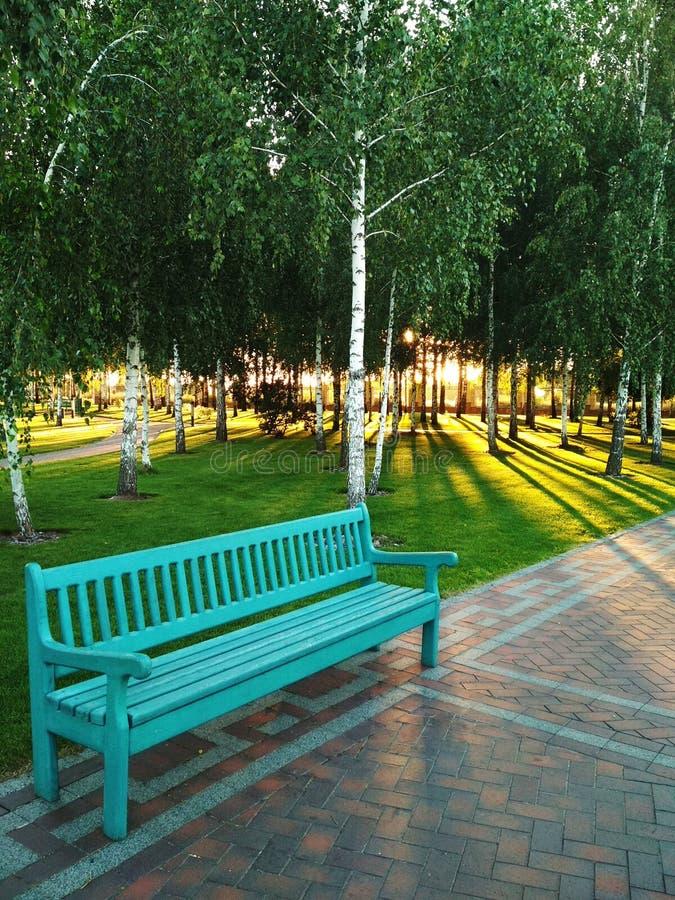 Błękitna ławka w parku obraz stock