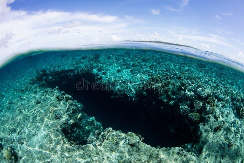 Błękitna dziura w Palau obrazy royalty free