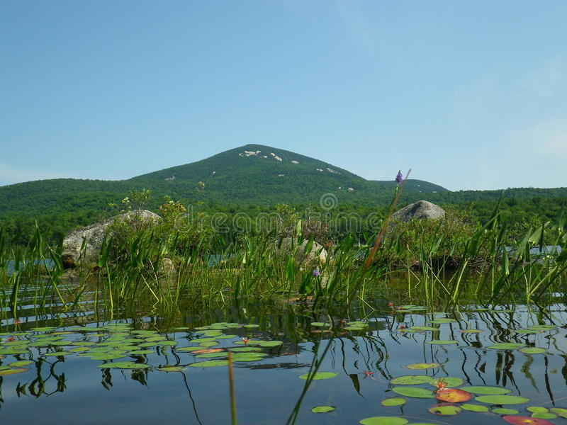 Błękitna góra od Jeziornego Durant zdjęcie stock