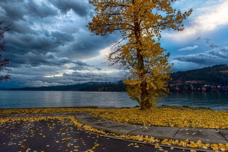 Błękitna godzina w Flathead jeziorze, Montana zdjęcia stock