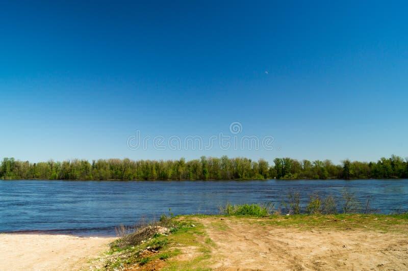 Błękitna rzeka z lasowymi drzewami zdjęcia stock