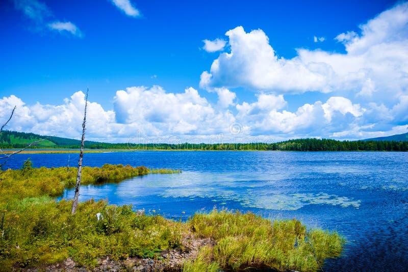 Błękitna woda morska wybrzeże zielony gazon góry w odległości zielone rośliny na wzgórzach obraz stock