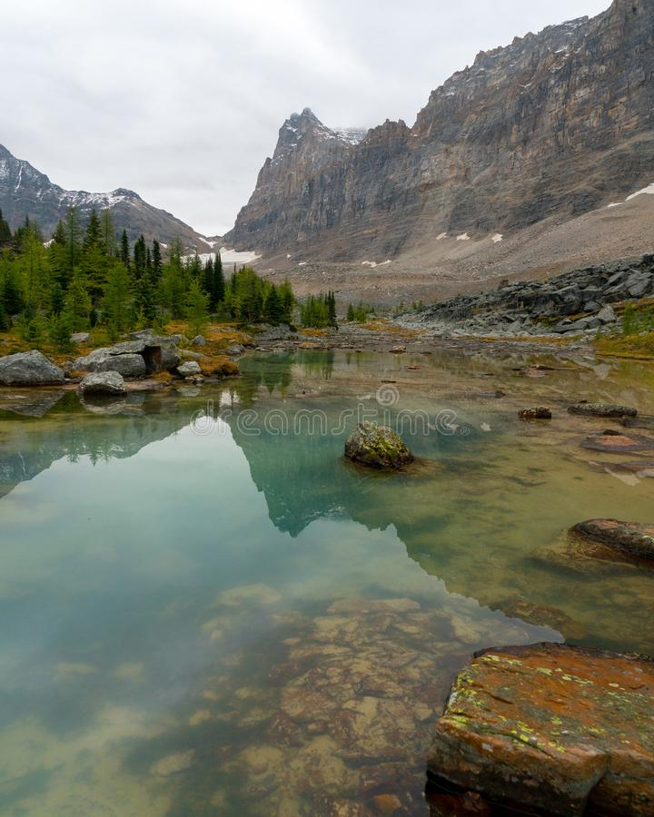 Błękitna wysokogórska gleczer woda w kolumbia brytyjska Yoho parku narodowym obraz royalty free