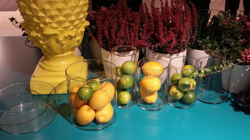 Błękitne żółte owoc fotografia royalty free