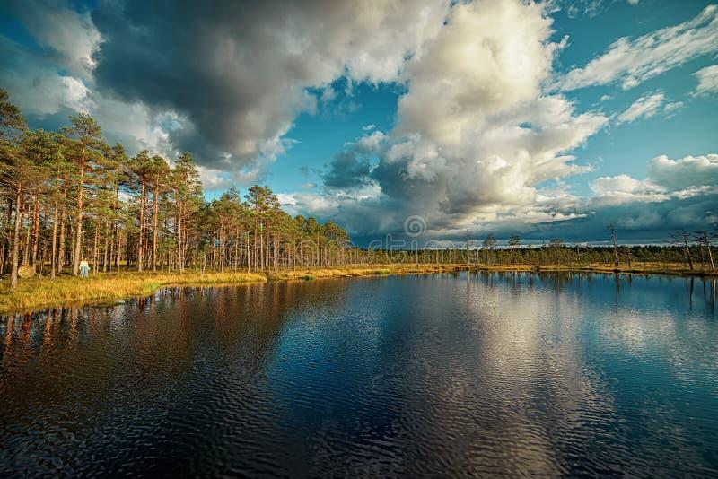 Błękitne jezioro Viru Raba w Estonii obraz stock