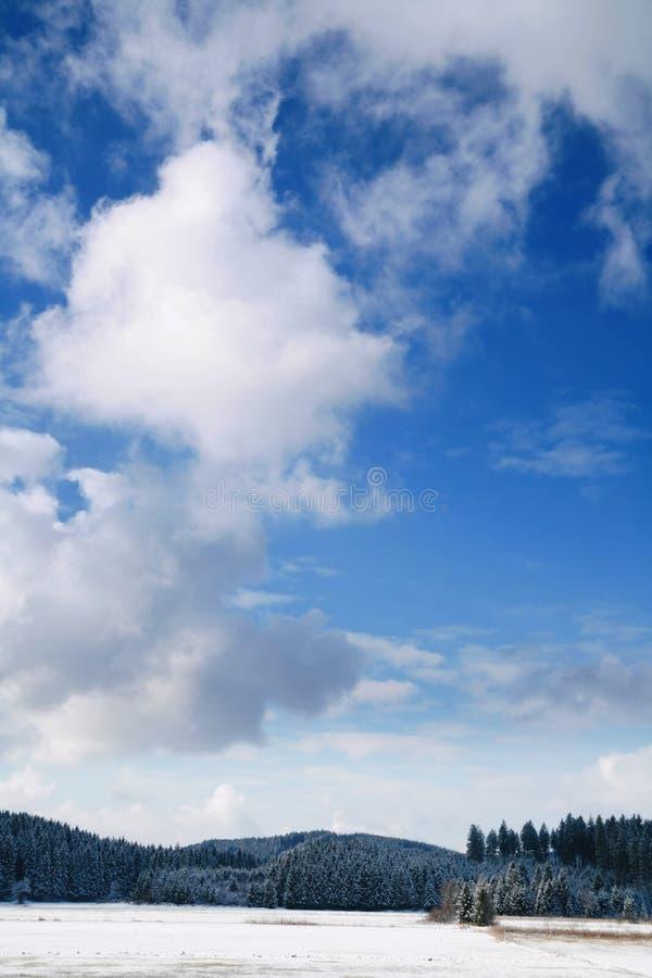 błękitne niebo śniegu zima obrazy royalty free