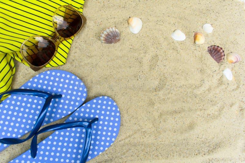 Błękitne trzepnięcie klapy, okulary przeciwsłoneczni na piaskowatej plaży z seashells obrazy royalty free