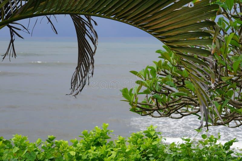 Błękitne wody w Bali widoku przez drzewko palmowe liści obrazy stock