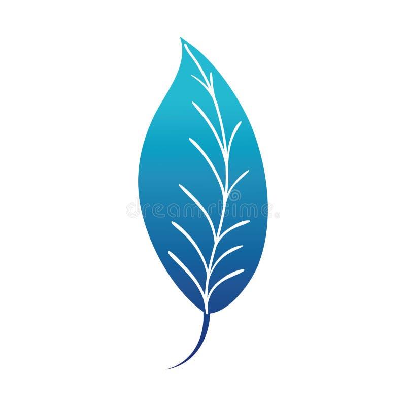 Błękitnej sylwetki liścia rośliny botaniki naturalny projekt ilustracja wektor