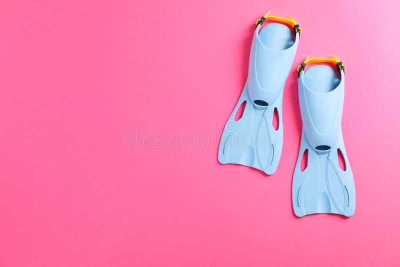 Błękitni flippers na różowym tle fotografia royalty free