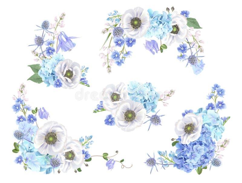 Błękitny anemonu set ilustracja wektor
