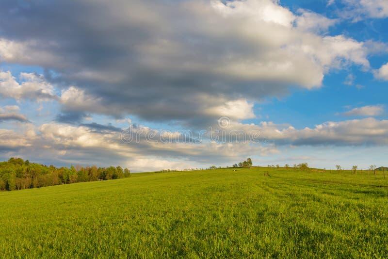 Błękitny chmurny niebo nad zielonymi wzgórzami obrazy royalty free