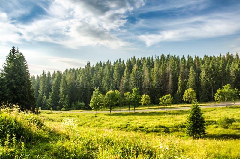 błękitny Crimea głęboki krajobrazowy halny nieba lato Ukraine drzewa zbliżają łąkę i las na wzgórzach obraz royalty free