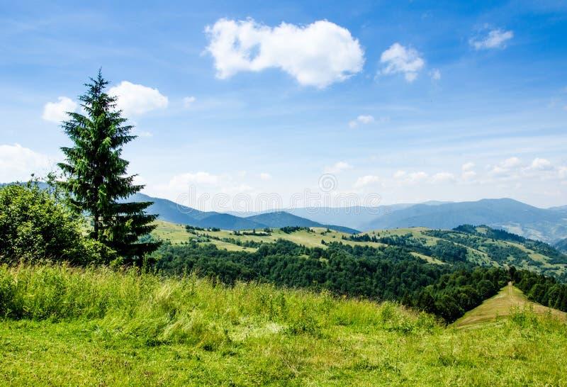 błękitny Crimea głęboki krajobrazowy halny nieba lato Ukraine drzewa zbliżają łąkę i las na wzgórzach obraz stock
