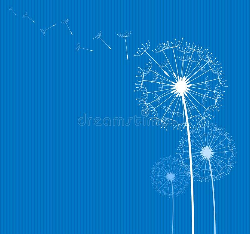 błękitny dandelion ilustracji