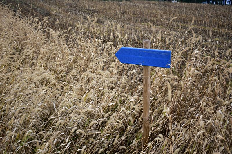 Błękitny drewniany podpisuje wewnątrz uprawy pole żadny tekst obrazy royalty free