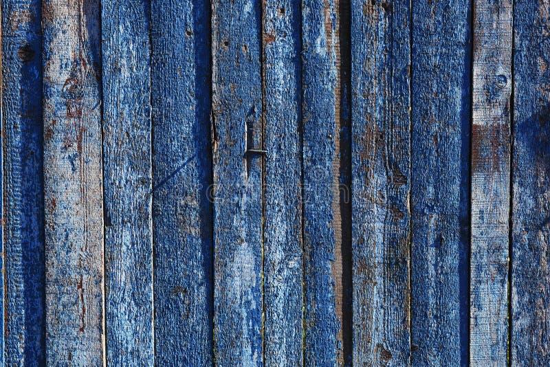 Błękitny drewniany tło dla prezentacj lub reklamy zdjęcie stock