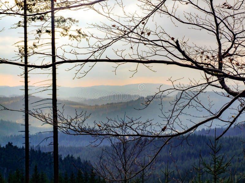 Błękitny góra krajobraz w ślązaku Beskids w północnym Czechia zdjęcia stock