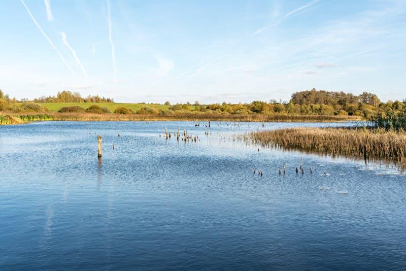 Błękitny jezioro z brzeg przerastającymi z trawą i drzewami zdjęcie stock