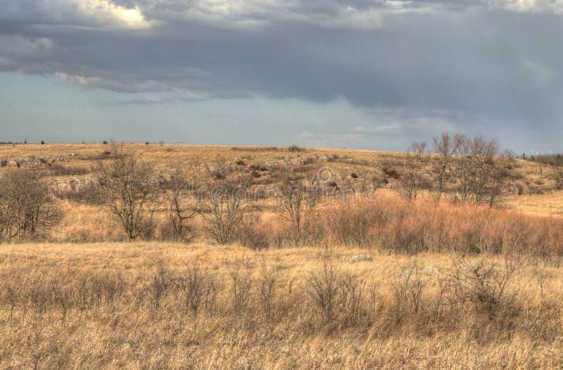 Błękitny kopa stanu park, Minnestoa obraz stock