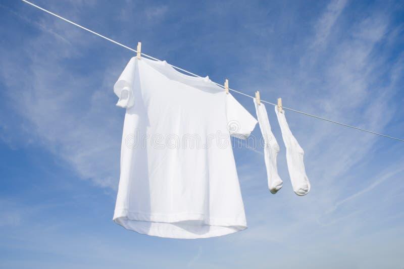 błękitny koszulowy nieba skarpet t biel